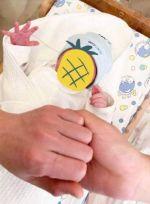 演员马可当爸此前承认隐婚两年 儿子取名小菠萝