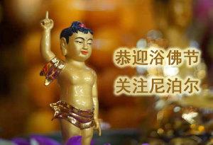 恭迎浴佛节 关注尼泊尔