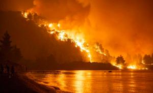 全球变暖之下,人类的五种未来你想过吗?