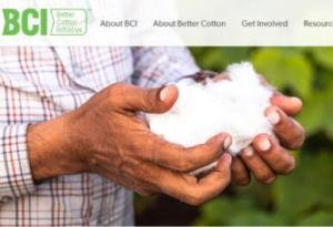 带头抵制新疆棉花的BCI 是个什么组织?