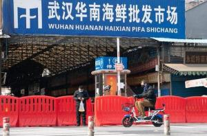 中疾控專家:華南海鮮市場存在冷鏈引入病毒可能