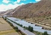 16年扎根高原援藏人员张际明:耕耘在第二故乡