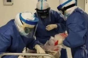 待命馳援!武漢大學人民醫院組建援冀重癥醫療隊!