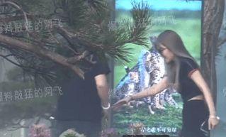 周扬青与富豪男友外出被拍 两人有说有笑举止亲密