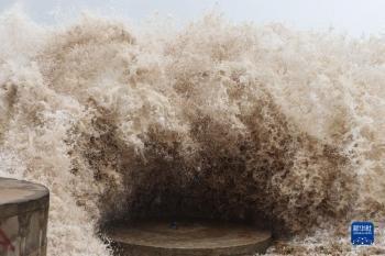 """台风""""圆规""""在海南琼海 最大风力12级(图)"""
