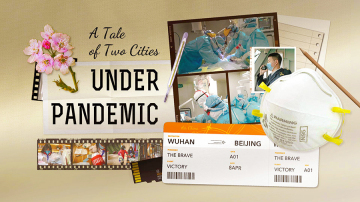 A Tale of Two Cities under Pandemic