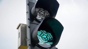 Peony blooms on traffic lights!
