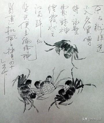 「烟云江湖」螃蟹能直接生吃吗?能!在中国宋朝就曾风靡一时