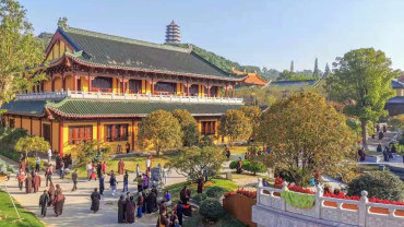 东林寺征集学佛故事,你是怎么开始学佛的?