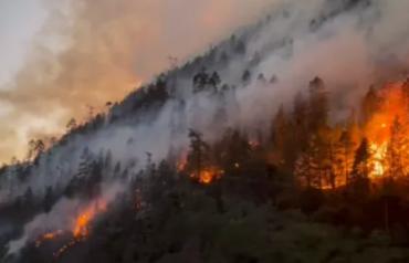 西藏林芝发生山火,正在救援