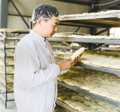 甘肃皋兰县陈柏年返乡创业,发展特色农产品加工产业—— 做共同致富的有心人(人物故事·聚焦乡村创业)