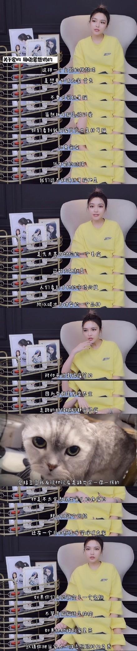 周扬青呼吁不养折耳猫 折耳猫的制作方式太残忍