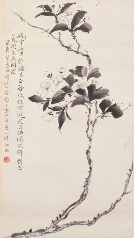 《梨花图》轴,近现代,陈师曾绘,纸本,墨笔,纵56.8厘米,横31.4厘米。