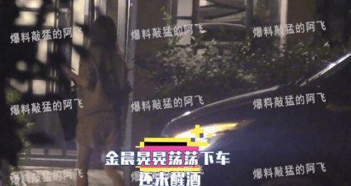 金晨新恋情疑似曝光 与男子醉酒后车内拥吻