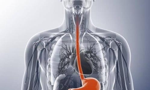 "PD-1抑制剂""K药""中国获批一线食管癌治疗"