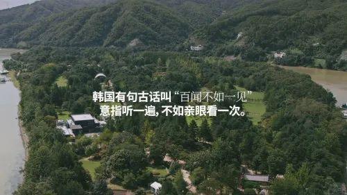 韩国旅游宣传片的这句话,把中国网友看傻了