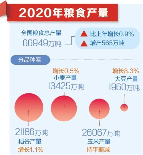 经济持续稳定恢复 综合国力不断增强——国家统计局相关负责人解读2020年主要经济数据(上)
