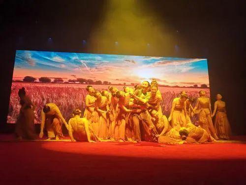 山东省第十届残疾人艺术汇演在济宁举行,济宁代表团获多个奖项