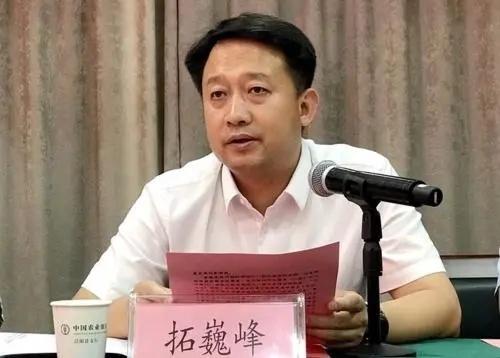 泾阳县县委书记拓巍峰