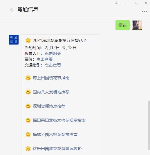 2021深圳机场航站楼赏花打卡点指引 一步一景让旅途步步生花