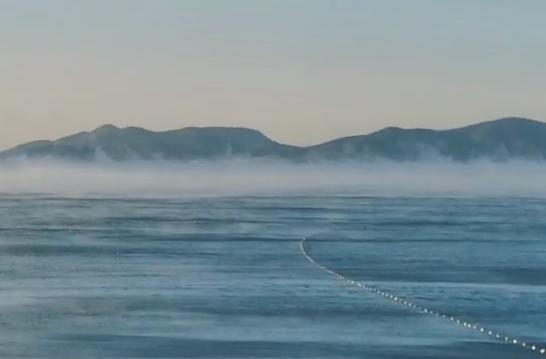 """-15℃的青岛前海仙气飘飘,出现""""海浩""""奇观 现场视频合集先睹为快"""
