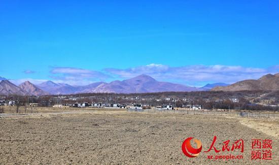 """半个世纪征程 西藏隆子县筑起一条""""绿色长城"""""""