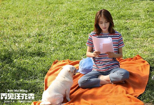 宠物题材奇幻电影《再见汪先森》发布主题曲 将于7月9日上映