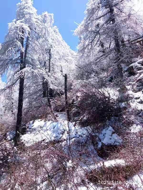 中国旅游日 太白山门票免费啦!