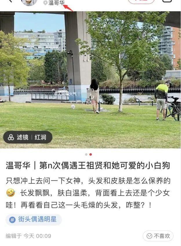 54岁王祖贤温哥华独自遛狗被偶遇 网友夸其似少女