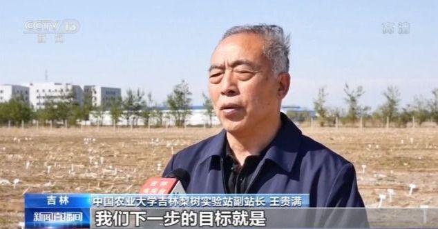 """沿着高速看中国丨""""梨树模式""""的""""一田一站""""为黑土地助力加""""油"""""""