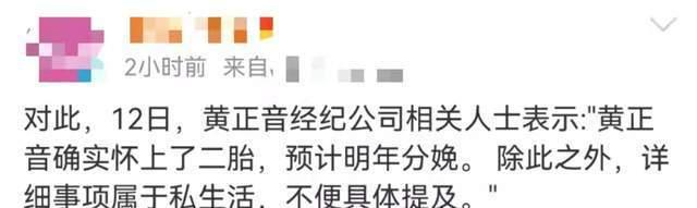黄正音宣布怀二胎 三月前才刚与富豪前夫复合