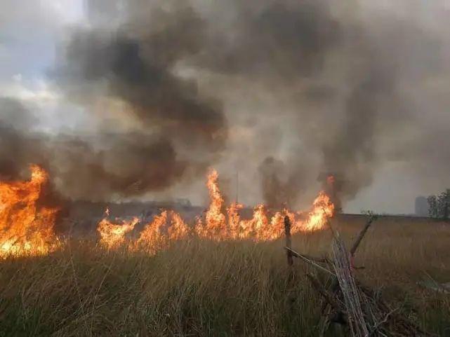 滨州滨城区北海明珠小区外围突发火灾,系业主随手扔烟头造成