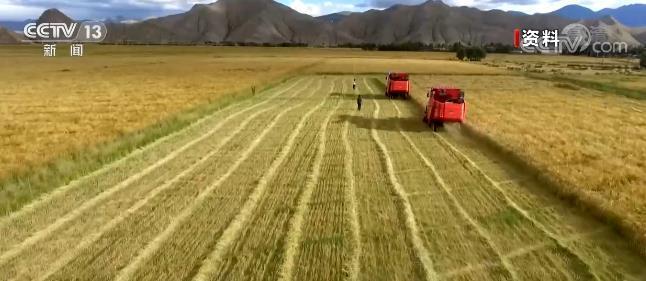 我国储备粮规模稳定粮食完好仓容超6.5亿吨 达到世界较先进水平