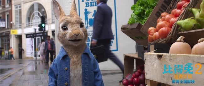 《比得兔2:逃跑计划》确认引进 揭秘兔头成名史