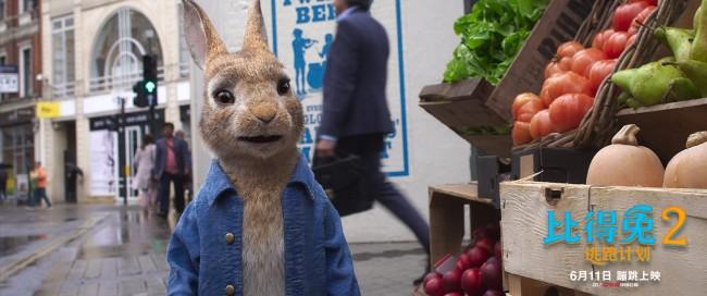 《比得兔2:逃跑计划》定档611 郭麒麟献声比得兔