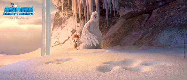 《笨鸟大冒险》定档 7月10日 成长旅途即刻开启
