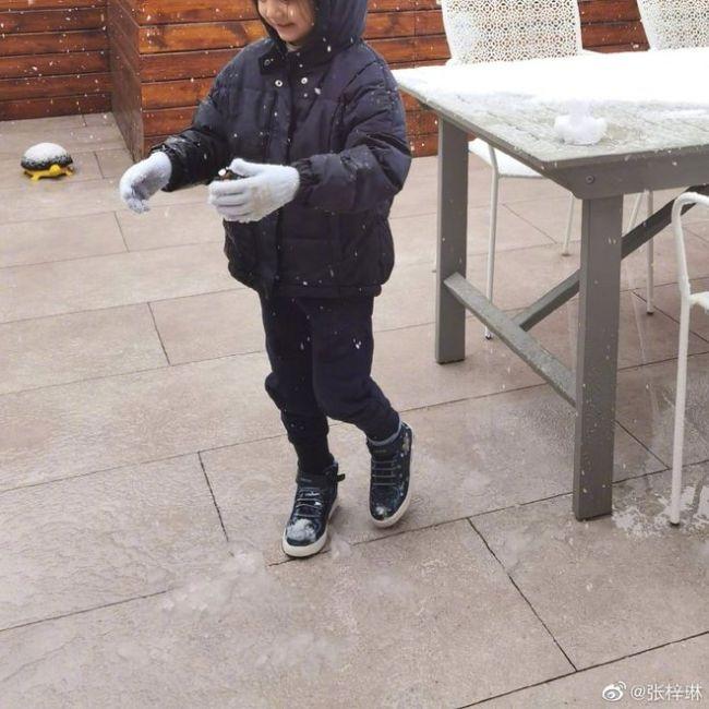 张梓琳宣布怀二胎:一只小小长颈鹿在路上