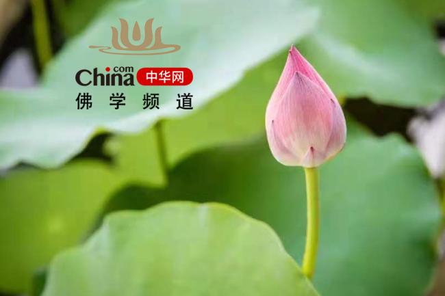 中华网佛学频道诚招英才,期待你的加入!