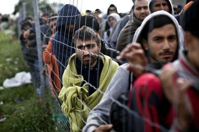 阿富汗难民 资料图