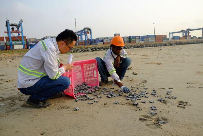 """共建绿色""""一带一路"""",中国企业干了这些事儿"""