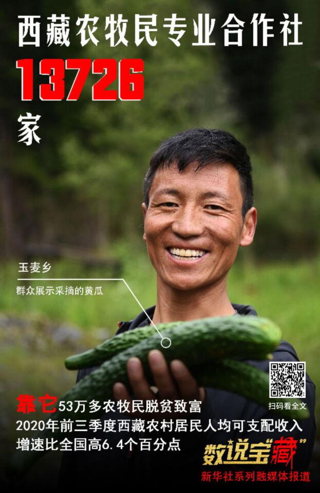 """从这组数说宝""""藏""""海报,看西藏今日幸福生活"""