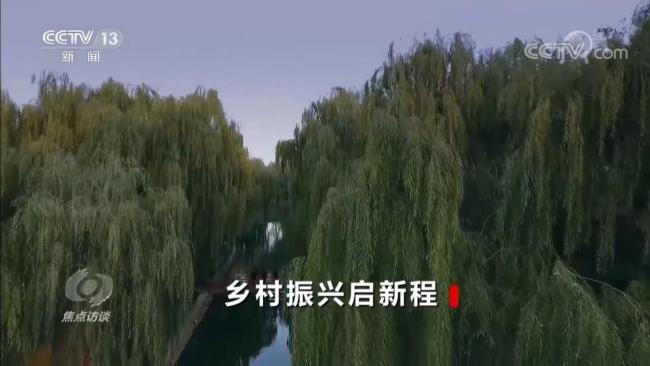 焦点访谈:乡村振兴启新程