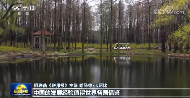 """多国人士:""""十四五""""规划展现中国发展蓝图 绿色发展体现责任担当"""