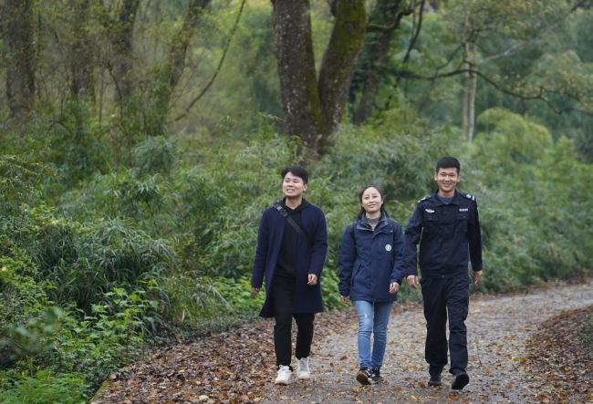 陈亮亮(右)、邹鸿堰(中)和汤勇在森林中行走(3月18日摄)。新华社记者 万象 摄