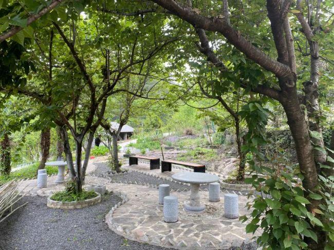 4月17日,江欣用一年时间翻新被烧毁的房子,她把房子二层空地设计成一个迷你小花园。受访者供图