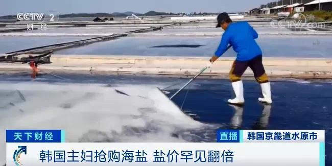 疯狂!日本决定核污水排海后,韩国抢盐风波又起