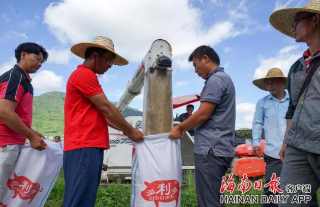 """平均亩产1004.83公斤!袁隆平团队超级杂交稻""""超优千号""""传喜讯"""