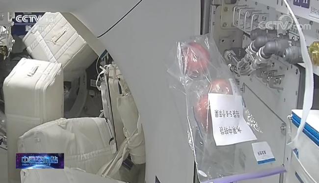 """航天员上演""""太空吃播"""":菜品120多样 营养均衡"""