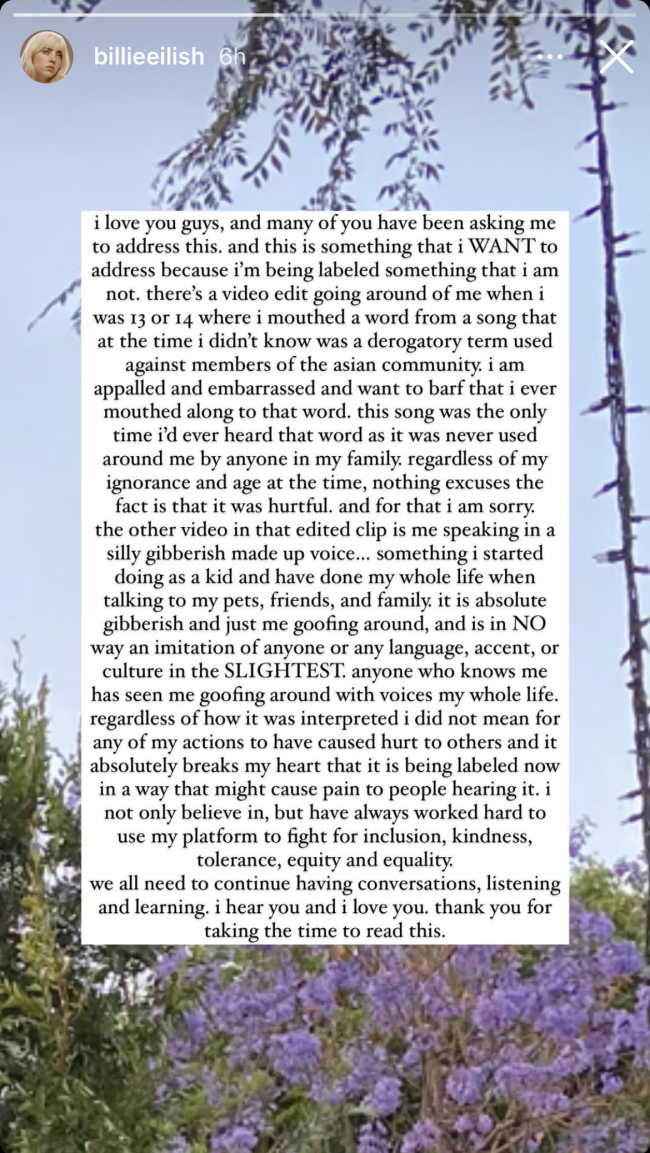 美国歌手碧梨就疑似辱华道歉:不知是贬低亚裔的词
