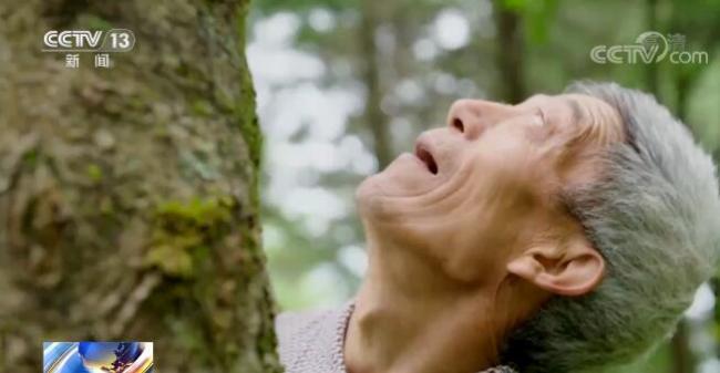 【重返现场看变化】重庆巫溪:昔日石头山今朝绿满坡 离不开陡崖种树人